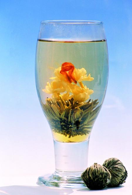 Teerose Sunflower